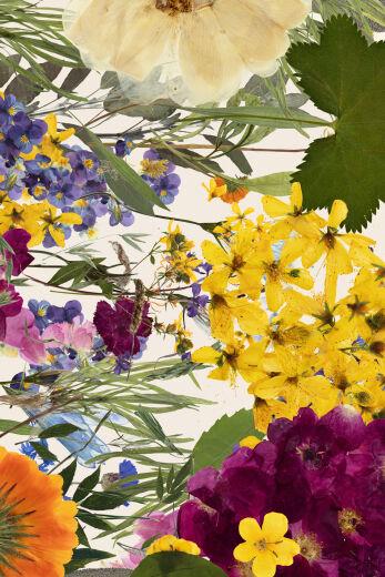 Frantsila Herb Farm collages