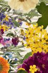 frantsila_collage_by_carlbergman_final_web_2000px_JPEG_SRGB_01.jpg